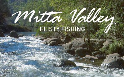Mitta Valley Feisty Fishing