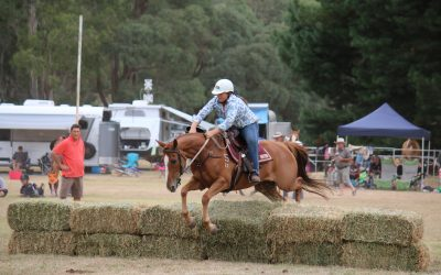 Mighty Mitta Muster